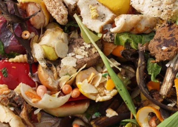 Der Lebensmittelverschwendung entgegenwirken